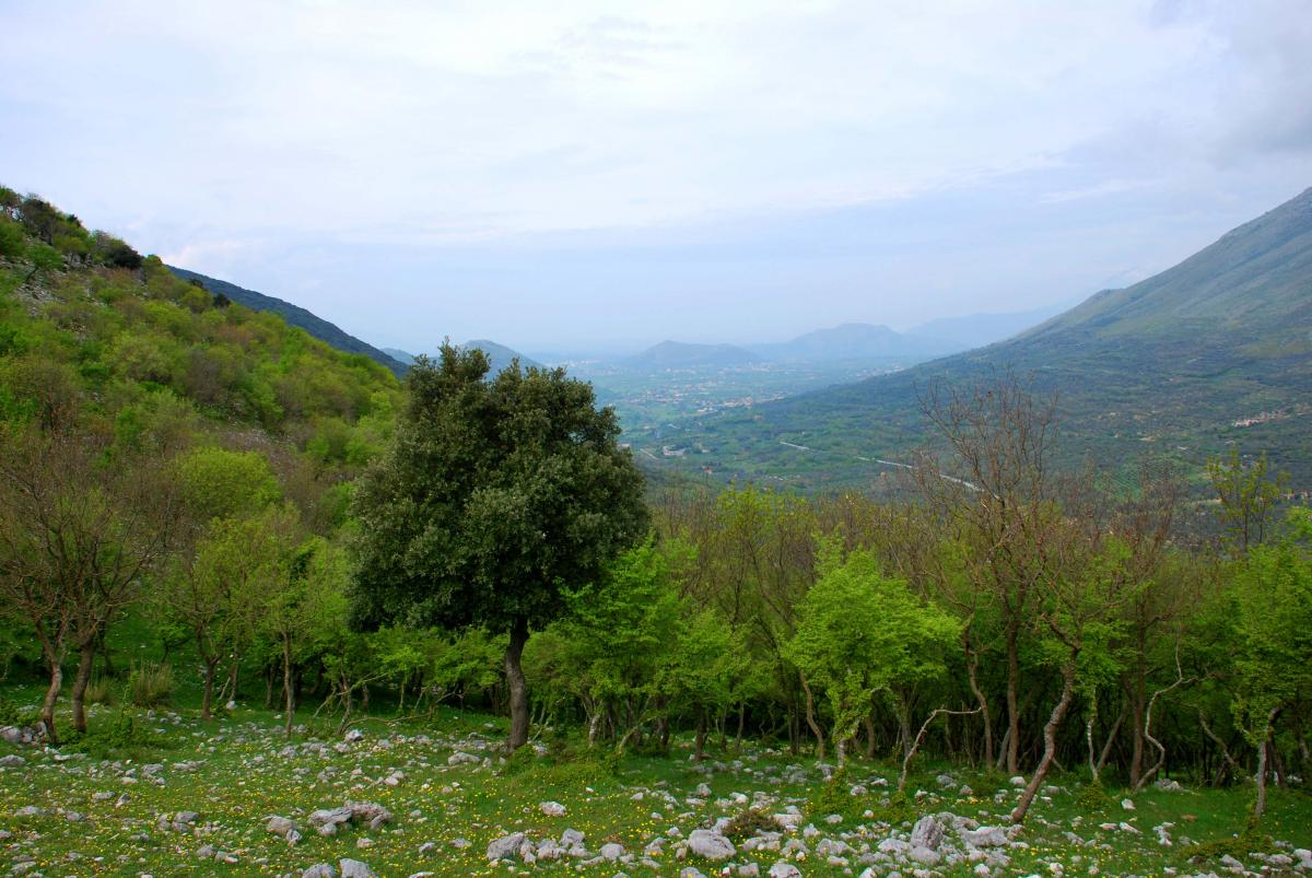 2010.04.18 Azienda Faunistico-Venatoria Chiuvitta .141
